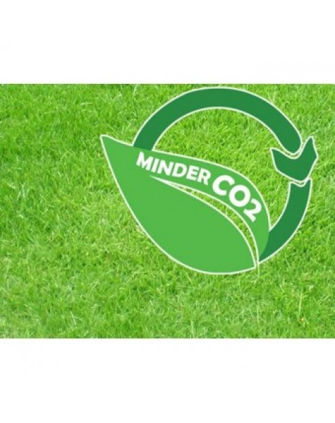 Milieubewust gras per 1m²